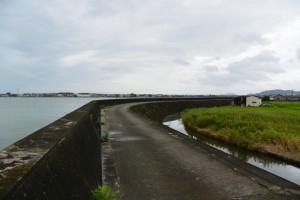堤防道路を一色渡船場跡から汐合大橋方向へ