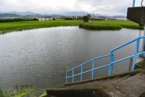 堤防道路付近の池(伊勢市一色町)