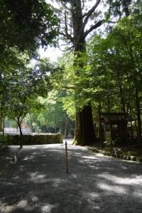 外宮 北御門参道から遠望する御饌殿
