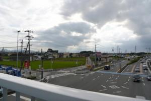 国道23号高向交差点の歩道橋から遠望する宇須乃野神社および高向大社の社叢