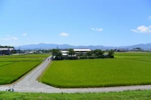 宮川の右岸堤防から望む山田奉行所記念館