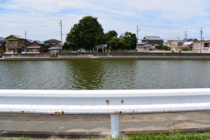 勢田川右岸のハマボウ(浜郷小学校記念公園)付近から望む対岸の牟山中臣神社