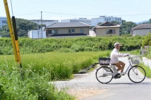 御塩道(二軒茶屋餅〜神久交差点)