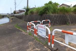 勢田川右岸のハマボウ(浜郷小学校記念公園)付近、逆向きの警告板