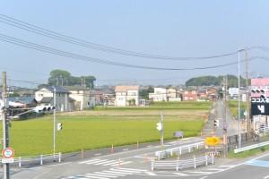 高向交差点付近の歩道橋(国道23号)から遠望する宇須乃野神社および高向大社の社叢