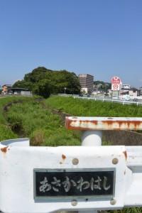 朝川橋から遠望する田上大水神社(豊受大神宮摂社)の社叢