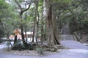 風宮および風日祈祭のために参拝が規制された多賀宮への石階(外宮)
