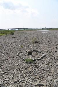 宮川の川原(右岸側)