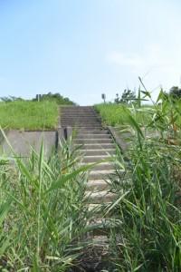 宮川右岸堤防道路側の階段(宮川大橋下流側)