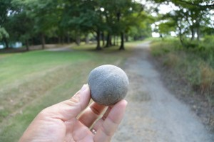 宮川の川原で見つけたエセ丸い石?