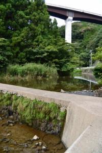 鳥羽河内川から見上げる第二伊勢道路の河内橋(鳥羽市河内町)
