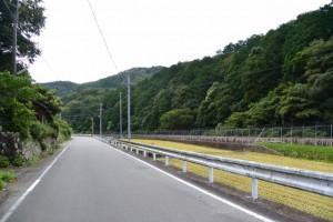 山の神付近の田んぼ(鳥羽市河内町)