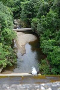 河内ダムの下流側(鳥羽市河内町)
