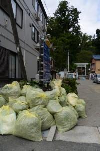 剪定された植栽の枝等が積まれた賀多神社参道入口付近(鳥羽市鳥羽)