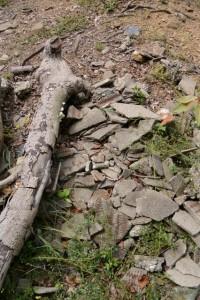 樋の山山頂