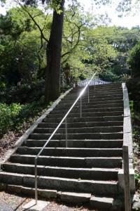 慈眼山 金胎寺の参道