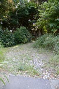 舗装路から地道へ(三重-7 3949)