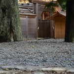 またまた・・移動していたお気に入りの丸い石(外宮古殿地)
