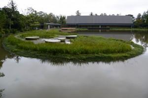 勾玉の形をしていた勾玉池の菖蒲園(外宮)