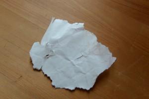 台風15号の強風で千切られた御神杉の巻紙