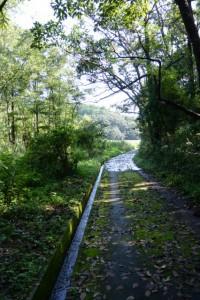 国道42号から池の浦シーサイドパーク海水浴場方向へ
