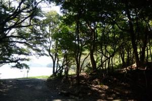 粟皇子神社(皇大神宮 摂社)付近、海の蝶側の砂浜へ