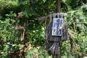 国道42号(JR参宮線 池の浦シーサイド駅付近〜松下駅付近)