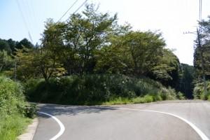 (右側)旧金輪橋(藤川)付近