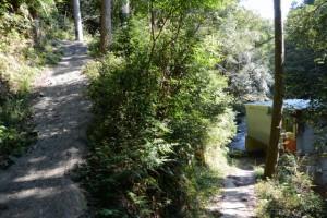 林道芦谷線から藤川への坂道