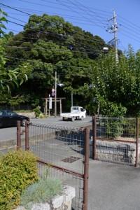 志摩広域消防組合磯部分署付近から遠望する佐美長神社の社叢