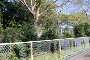 佐美長神社(伊雜宮 所管社)の社域を取り囲むフェンス、磯部神社付近