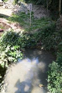 (13) 風呂屋の谷