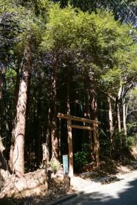 (旧)産土社の案内板と「←10m 上之郷の石神」の道標