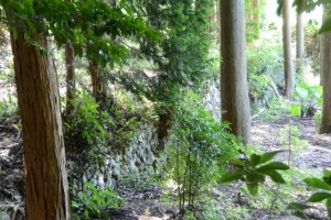(14) 旧村社「谷社」跡の石垣