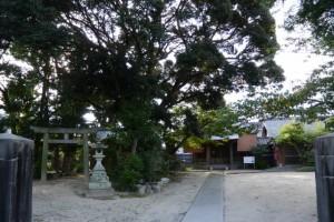 中野大乃己所神社、慈眼寺(津市一身田中野)