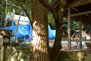 銅板が張られた新しい本殿の屋根(松下社)