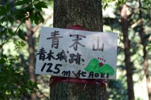 「青木山、青木城跡 125m(イセAOKI)」山頂標
