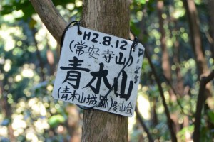 「H2.8.12(常案寺山)青木山(青木城跡) P12」山頂標