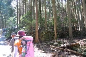 駐車場からおうむ石へ(度会町南中村)