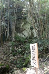 岩かべ出水(おうむ石入口〜おうむ石)