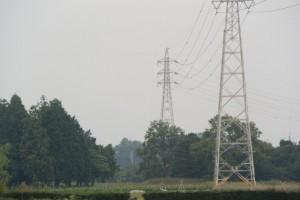 斎宮跡の上を通過する送電線