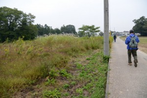 斎宮跡、方格地割の外周道路(北側)
