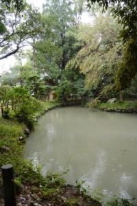 雨の伊雜宮(皇大神宮別宮)