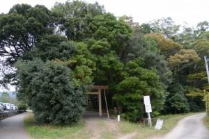 三基めの鳥居が建てられた松下社(伊勢市二見町松下)