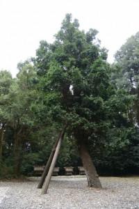神麻続機殿神社末社八所のうちの四所