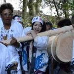 御神木、三本目の担ぎ上げ(松阪神社式年遷座・お木曳き)