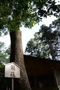 仮殿の案内板、有田神社(伊勢市小俣町湯田)