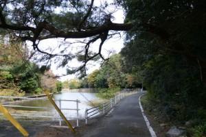 松下社に隣接する池(伊勢市二見町松下)