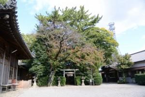 拝殿、本殿、三囲稲荷神社、社務所(御厨神社)