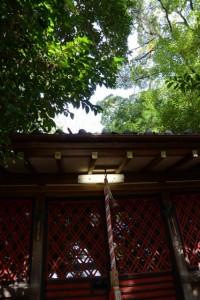 三井家祈願神社である三囲稲荷神社(御厨神社)